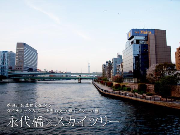 P3246738 永代橋は、東京都中央区新川と江東区永代を結ぶ隅田川にかかる橋です。 永...