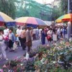 お富士さんの植木市と花のフェスティバル