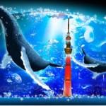 小笠原から実物大クジラがやってきた!